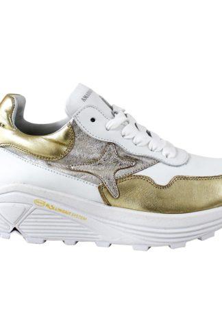 Argento/oro/bianco